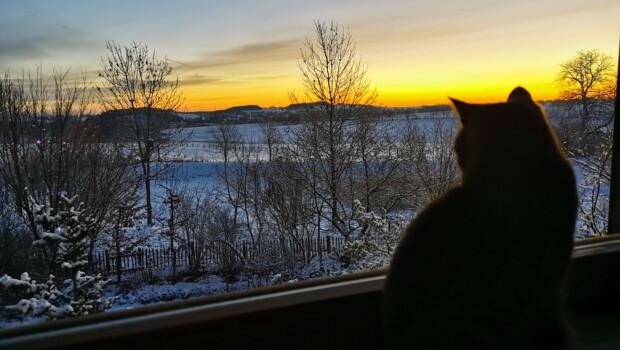 optimistischer Blick mit Moritz